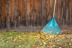 Fall yard work. Rake leaning against wooden fence during Fall yard work Stock Images