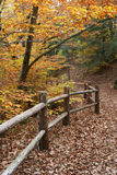 Fall-Zaun Stockbilder