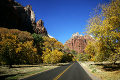 Fall in Zion Royalty Free Stock Photo