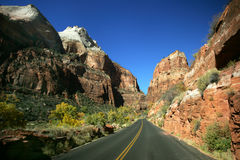 Fall in Zion Stock Images