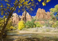 Fall In Zion. The vivid colors of autumn, captured from the Court of the Patriarchs along the Virgin River in Zion Canyon - Zion National Park, Utah. As is Stock Image