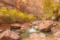 Fall in Zion National Park. The scenic virgin river flows through Zion national park Utah in fall Stock Photography