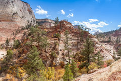 Fall at Zion Stock Photo