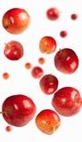 falla för äpplen Royaltyfria Bilder