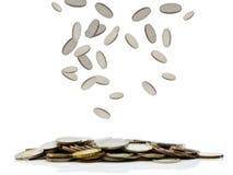 falla för mynt royaltyfria bilder