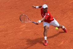 Falla at Roland Garros 2011 Stock Images