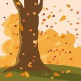 Fallande höstsidor och träd stock illustrationer