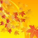 fallande leaf stock illustrationer