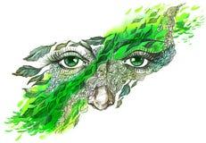 fallande leafs vektor illustrationer