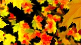 fallande leaves för höst abstrakt bakgrund Royaltyfria Bilder