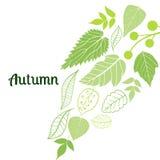 fallande leaves för höstbakgrund kan användas för Royaltyfri Bild