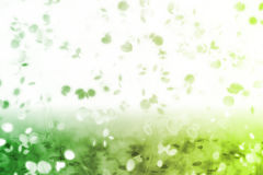 fallande leavesminnesnostalgiker sött Royaltyfria Foton