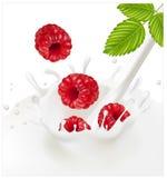 fallande röd mogen färgstänk för milky hallon stock illustrationer
