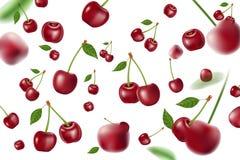 Fallande realistiska mogna körsbärsröda beståndsdelar Realistisk röd körsbär med sidabakgrund som isoleras på vit vektor 3d stock illustrationer