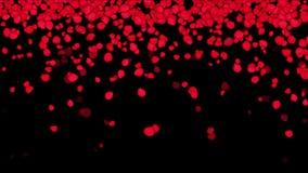 fallande rosa kronblad som 4k gifta sig bakgrund för dag för valentin` s royaltyfri illustrationer