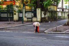 Fallande säsong i mummel Noi, Vietnam Royaltyfri Bild
