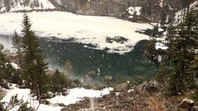 fallande snow arkivfilmer