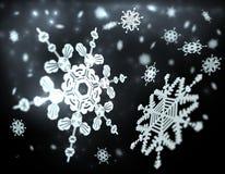fallande snowflakes Arkivbilder