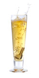 fallande tangenter för öl Arkivbilder