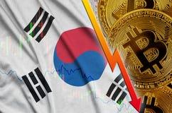 Fallande trend för för Sydkorea flagga och cryptocurrency med många guld- bitcoins royaltyfri bild