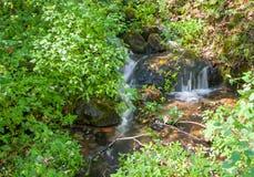 Fallande vatten Arkivbilder