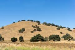 Fallansicht des Berges Stockfoto