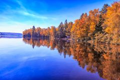 Fallbäume mit See stockfotos