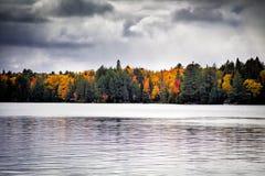 Fallbäume mit See lizenzfreies stockfoto