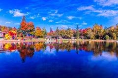 Fallbäume mit See lizenzfreie stockfotografie
