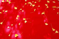 Fallblätter auf rotem Gewebe Stockbilder