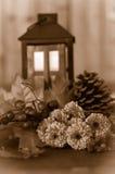 Fallblumen Stockfoto