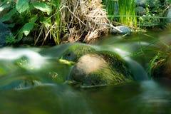 Fallbrook strumień Zdjęcia Stock