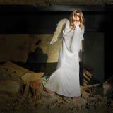 Fallen angel Royalty Free Stock Photo