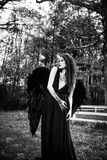 Fallen angel with black wings Stock Photo