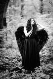 Fallen angel with black wings Stock Image