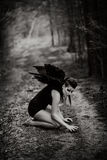 Fallen angel Stock Image