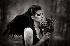Fallen angel Royalty Free Stock Images