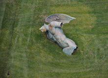 A Fallen Angel by Igor Mitoraj under the Leaning Tower Royalty Free Stock Photo