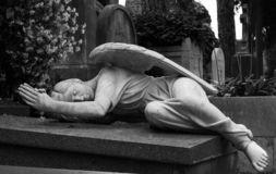 Fallen angel. Statue of an angel in a cemetery royalty free stock photos