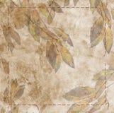 Fallen autumn leaf Royalty Free Stock Image