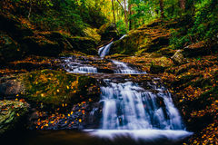 Fallen autumn leaves and a waterfall on Oakland Run in Holtwood, Stock Photo