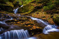 Fallen autumn leaves and a waterfall on Oakland Run in Holtwood, Stock Photos