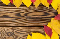 Fallen autumn yellow and red leaves on border of old worn rustic brown wooden table. With copy space stock photos