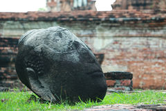 Fallen buddha head of Watmahathat Temple in Ayutthaya, Thailand. This ancient temple was built during the 14th century, but was reduced to ruins in 1767 when the royalty free stock images