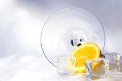 Fallen Cocktail Stock Image