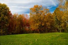Fallen colors Vermont Royaltyfri Bild