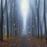 Fallen des Herbstlaubs Lizenzfreie Stockbilder