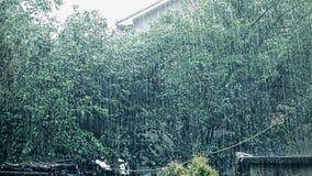Fallen des starken Regens stock video