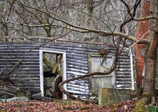 Fallen down house. Fallen house in wooden area with chimney standing Stock Photography