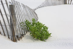 Fallen fencing on white beach Royalty Free Stock Image